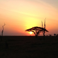 Sunset in Tanzania